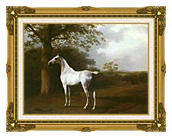 Jacques Laurent Agasse White Horse In A Meadow canvas with museum ornate gold frame