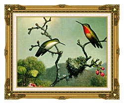 Martin Johnson Heade Ruby Throat Of North America Detail canvas with museum ornate gold frame