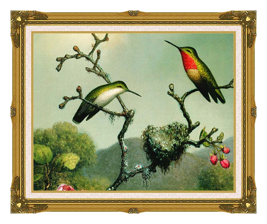 Martin Johnson Heade Ruby Throat of North America (detail) with Museum Ornate Frame w/Liner