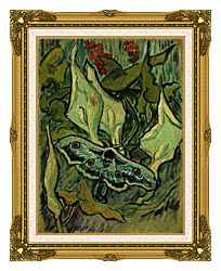Vincent Van Gogh Emperor Moth canvas with museum ornate gold frame
