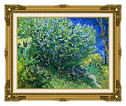 Vincent Van Gogh Lilacs canvas with museum ornate gold frame