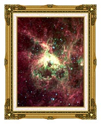 Courtesy Nasa Jpl Caltech 30 Doradus Newborn Stars Of Tarantula Nebula Portrait Detail canvas with museum ornate gold frame