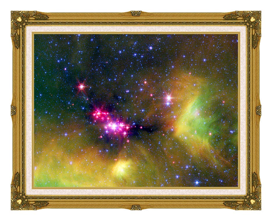 Courtesy Nasa Jpl Caltech Stars in Serpens with Museum Ornate Frame w/Liner
