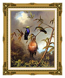 Martin Johnson Heade Black Breasted Plovercrest canvas with museum ornate gold frame