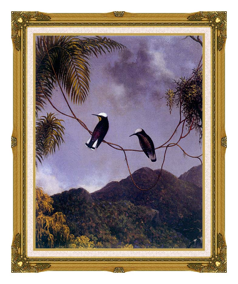 Martin Johnson Heade Snowcap Hummingbirds with Museum Ornate Frame w/Liner