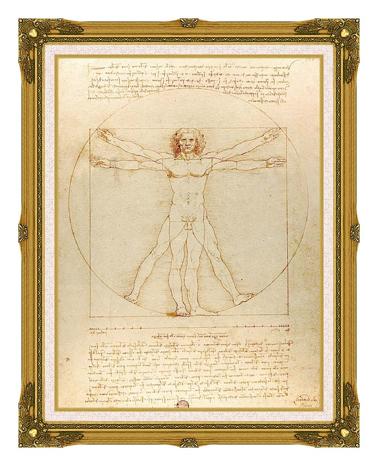 Leonardo Da Vinci Vitruvian Man with Museum Ornate Frame w/Liner