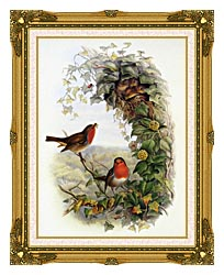 John Gould Robin canvas with museum ornate gold frame