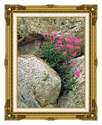 U S Fish And Wildlife Service Fireweed canvas with museum ornate gold frame
