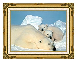 U S Fish And Wildlife Service Polar Bear With Cubs canvas with museum ornate gold frame