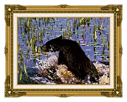 U S Fish And Wildlife Service Black Bear Cub In Pond canvas with museum ornate gold frame