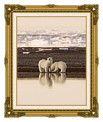 U S Fish And Wildlife Service Polar Bears canvas with museum ornate gold frame