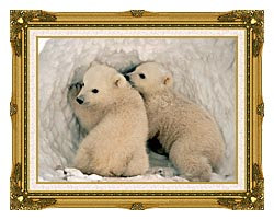U S Fish And Wildlife Service Polar Bear Cubs canvas with museum ornate gold frame