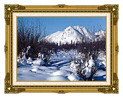 U S Fish And Wildlife Service Arctic Refuge In Winter canvas with museum ornate gold frame