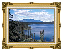 U S Fish And Wildlife Service Blackfish Lake canvas with museum ornate gold frame