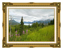 U S Fish And Wildlife Service Hillside With Fireweed canvas with museum ornate gold frame