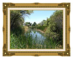 U S Fish And Wildlife Service Corn Creek Springs canvas with museum ornate gold frame