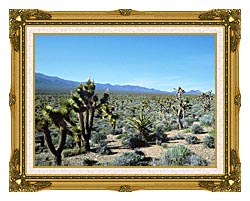U S Fish And Wildlife Service Yucca Forest canvas with museum ornate gold frame