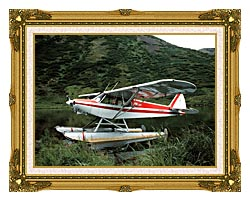 U S Fish And Wildlife Service Float Plane canvas with museum ornate gold frame