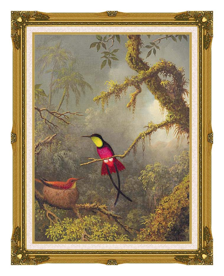 Martin Johnson Heade A Pair of Nesting Crimson Topaz Hummingbirds with Museum Ornate Frame w/Liner
