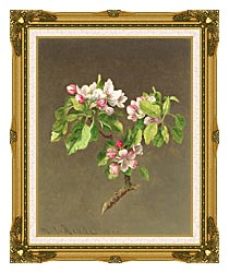 Martin Johnson Heade Apple Blossoms canvas with museum ornate gold frame