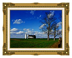 Ray Porter Uncle Buds Barn canvas with museum ornate gold frame