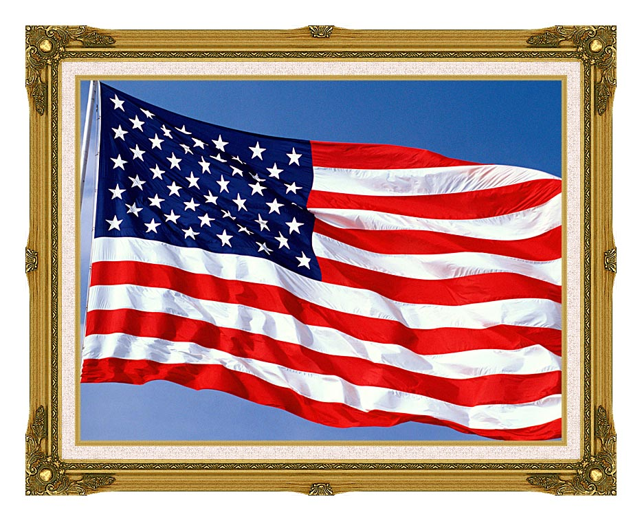 Visions of America American Flag Blowing in the Wind with a Blue Sky with Museum Ornate Frame w/Liner