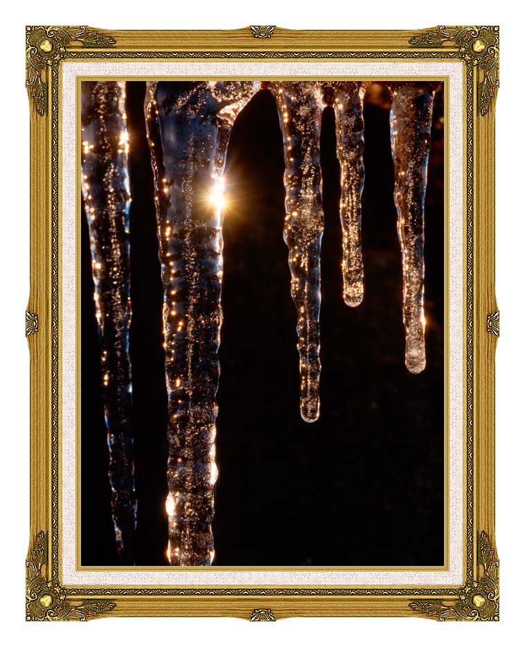 Visions of America Close-up of Icicles, Acadia National Park, Maine with Museum Ornate Frame w/Liner