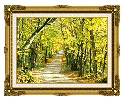Visions of America Tree Covered Road In The Woods New England canvas with museum ornate gold frame
