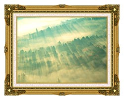 Visions of America Aerial View Of Forest On A Misty Morning Vermont canvas with museum ornate gold frame