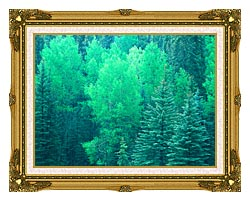 Visions of America Summer In Santa Fe National Forest New Mexico canvas with museum ornate gold frame