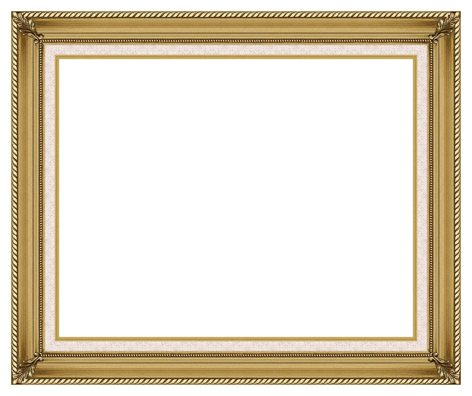 Gallery Gold Frame w/Liner